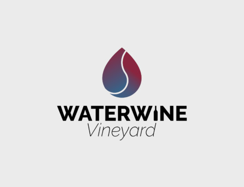 WaterWine Vineyard